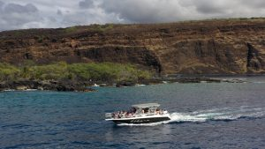 Immersive boat tours of the Big Island let you snorkel and swim with Dolphins